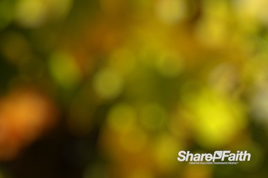 Yellow Bokeh Motion Background