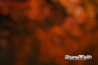 Orange Bokeh Motion Background