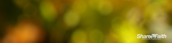Yellow Bokeh Triple Wide Motion Background