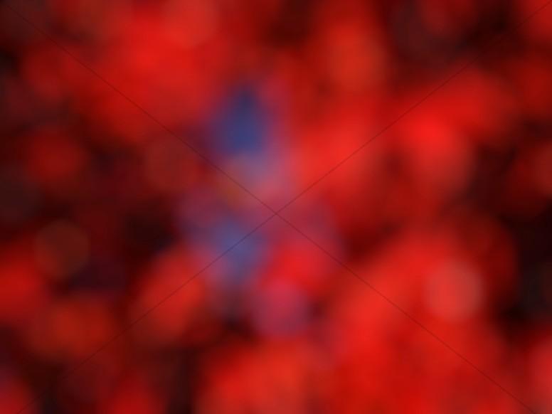Red Bokeh Worship Background