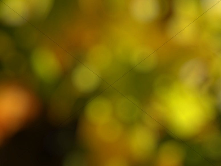 Yellow Bokeh Worship Background