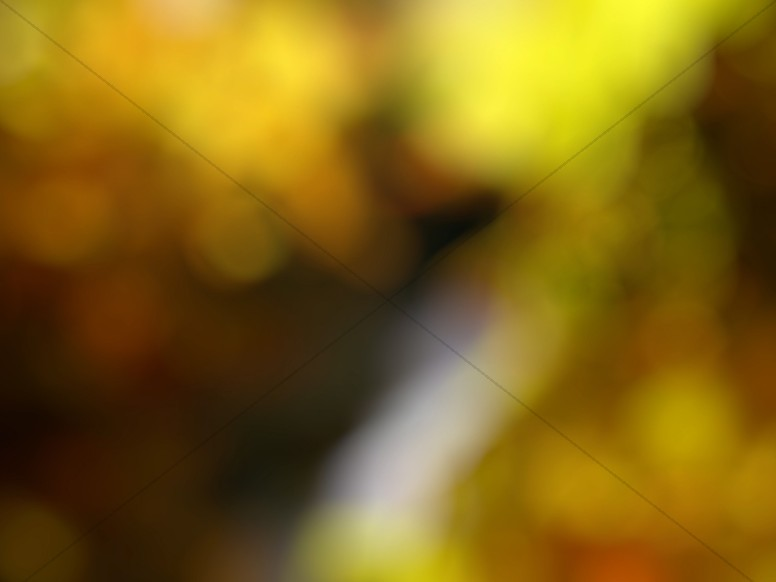 Deep Yellow Bokeh Worship Background