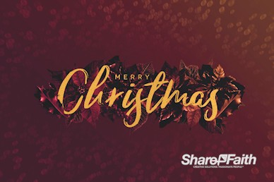 Merry Christmas Holly Greetings Motion Graphic