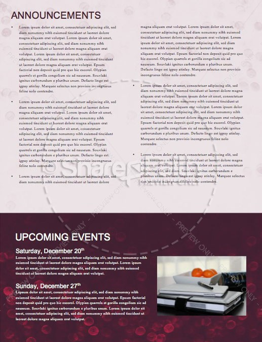 Merry Christmas Holly Newsletter Template