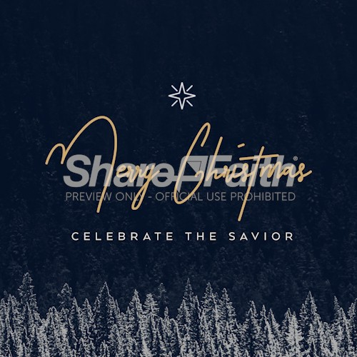 Merry Christmas Celebrate The Savior Social Media Graphic
