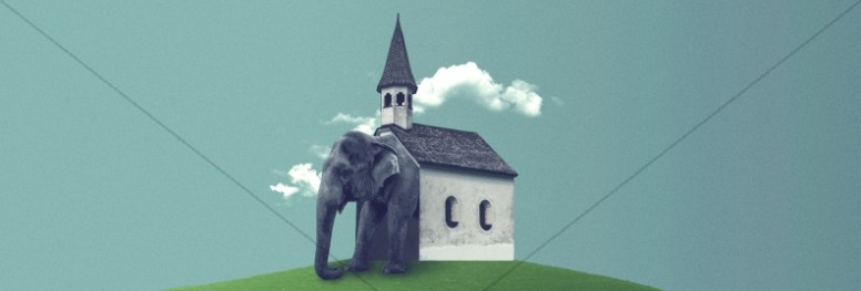 The Elephant In The Church Website Banner