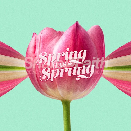Spring Has Sprung Social Media Graphic