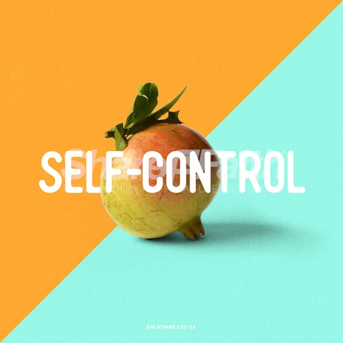 The Fruit of Self Control Social Media Graphic