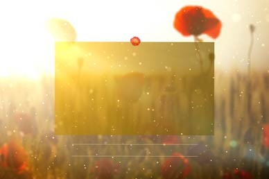 Lest We Forget No Text Motion Graphic