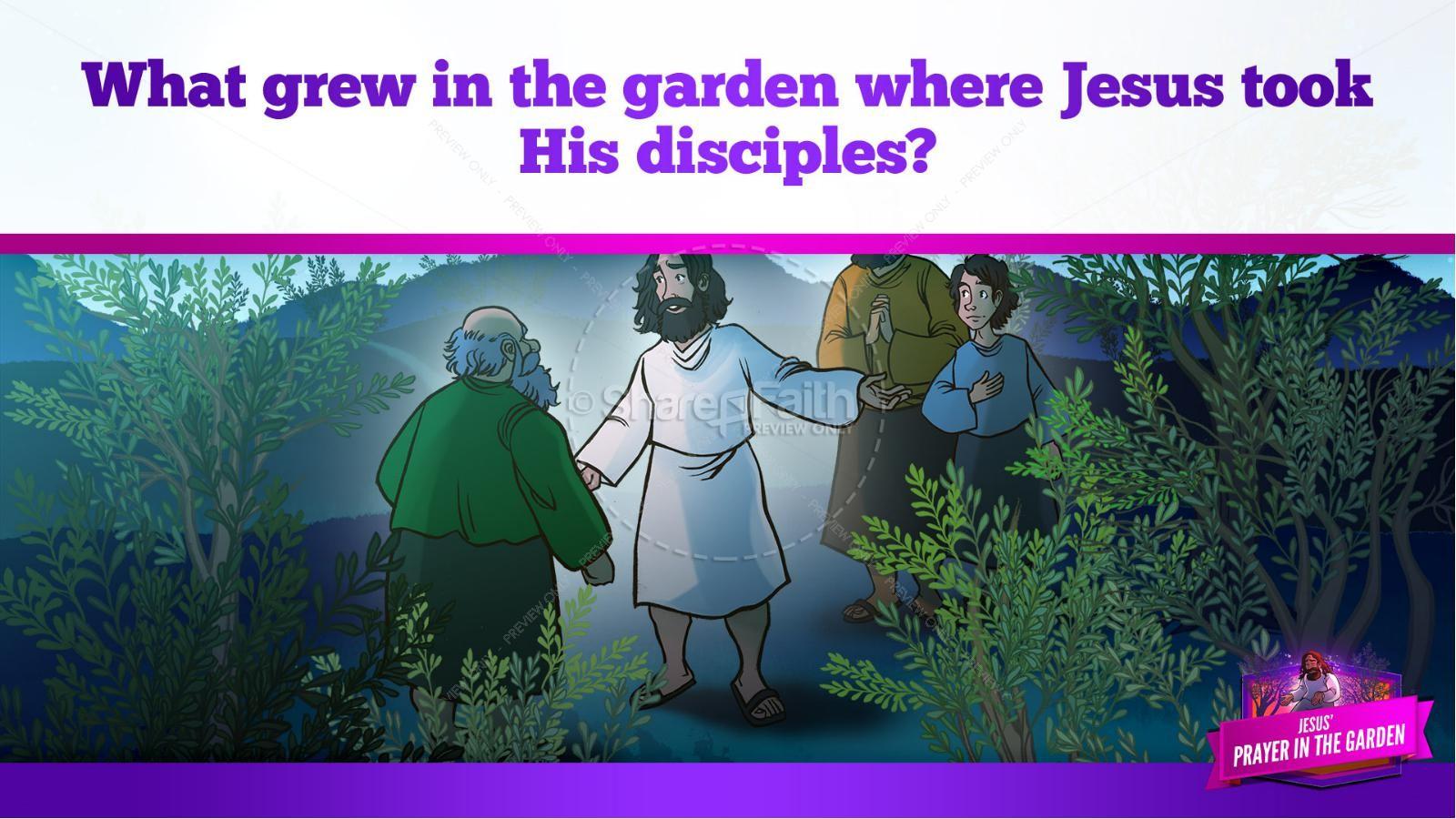Matthew 26 Prayer in the Garden Kids Bible Story | slide 11