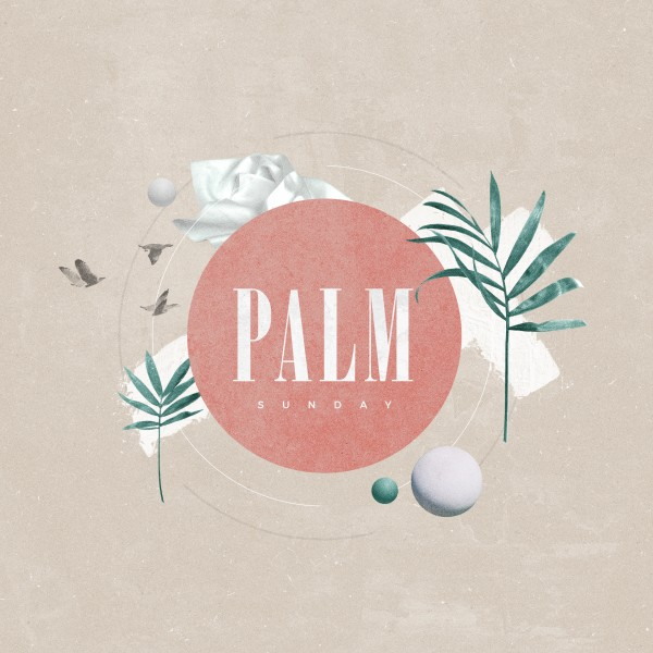 Palm Sunday Pink Church Social Media Graphic