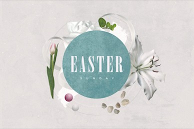 Easter Sunday Lily Title Motion Graphic