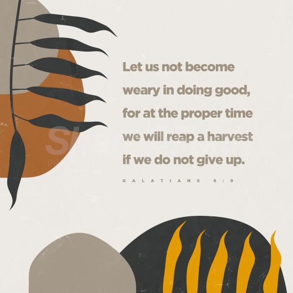 Reap A Harvest Social Media Graphic