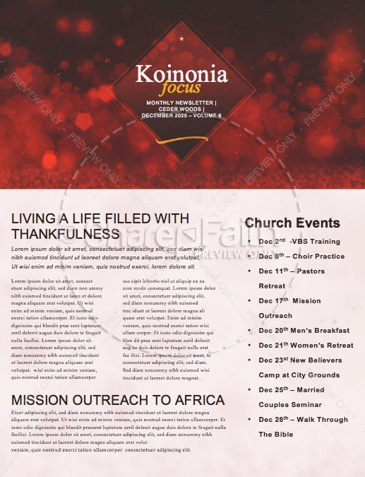 Experience Christmas Church Newsletter