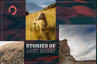Stories of Lost Sheep Mini Movie