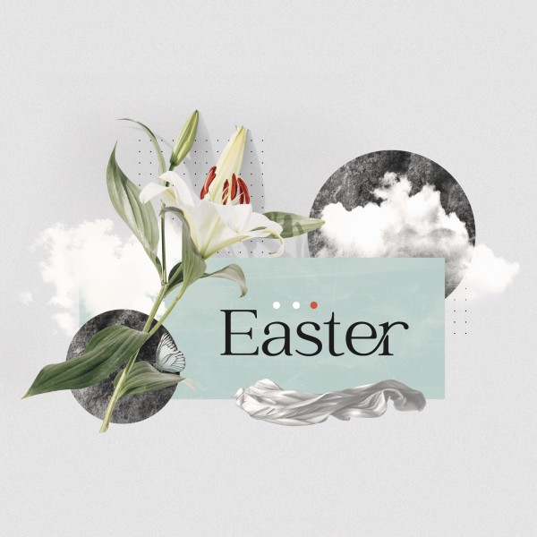 Easter Lily Social Media Graphic