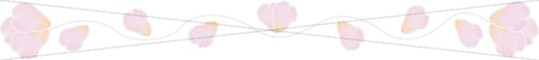 Pink Petals Top