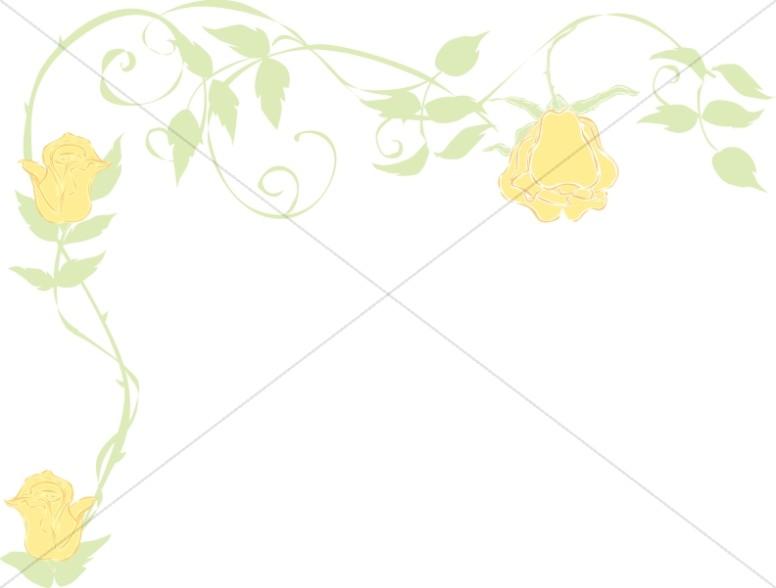 Yellow Rose Faded Corner
