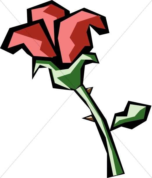 Graphic Red Rose