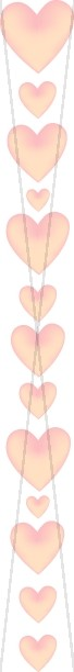 Peach Heart Program Side