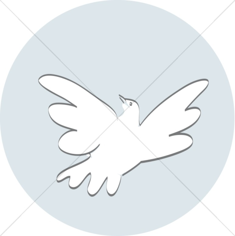 A Soaring Dove