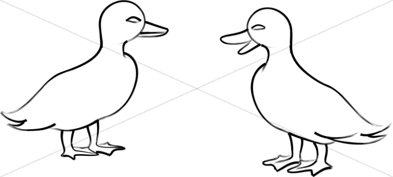 Two Ducklings Line Art