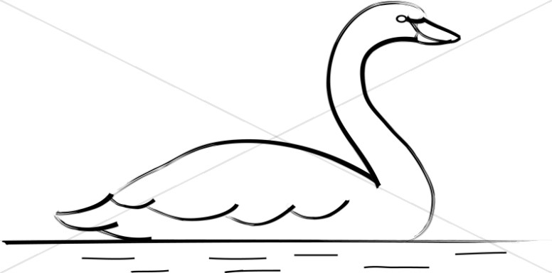Line Art Swan