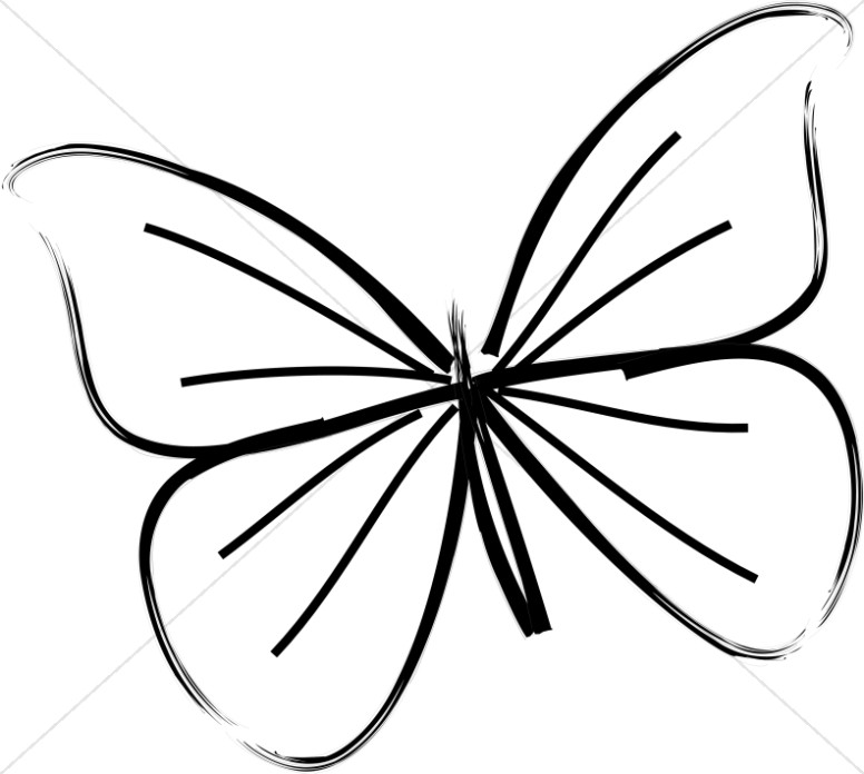 Single Butterfly Line Art