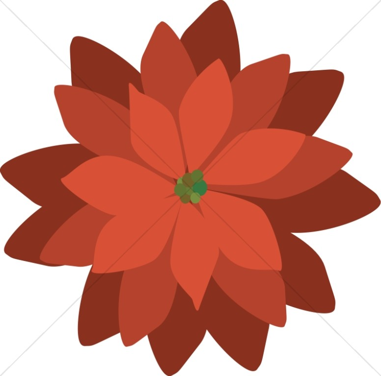 Modern Red Poinsettia