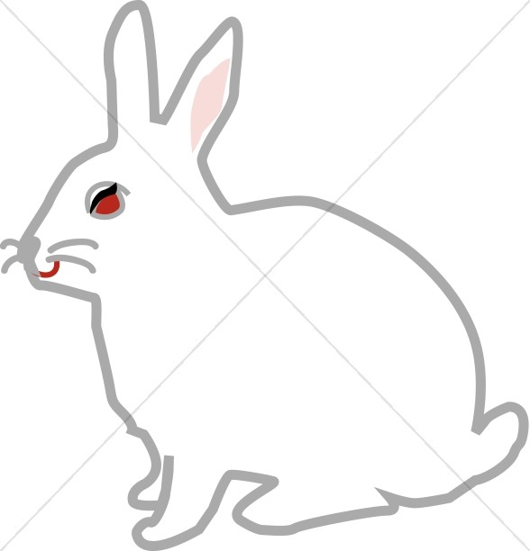 White Bunny with a Red Eye