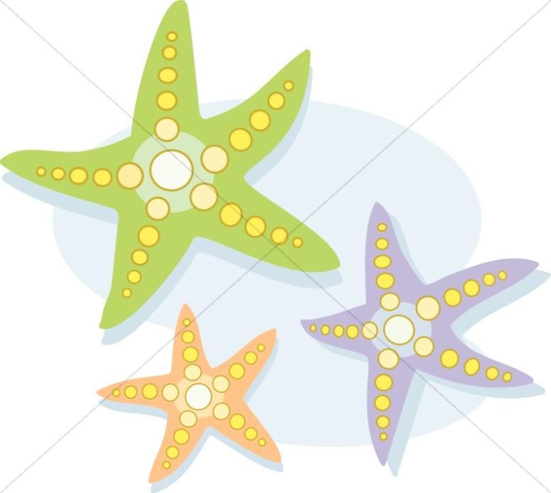 Colorful Starfish with Polka Dots