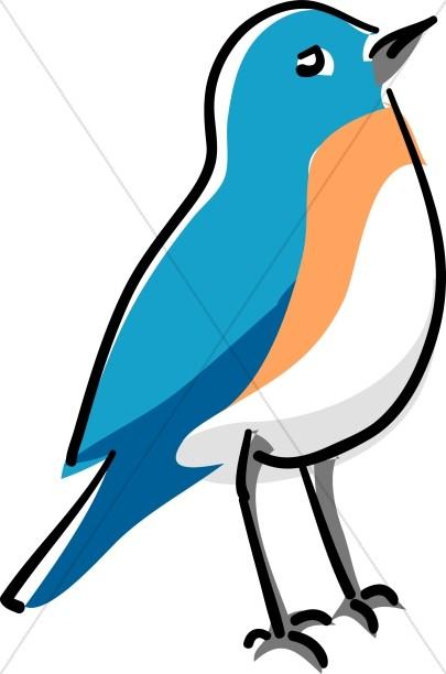 Blue Bird Standing