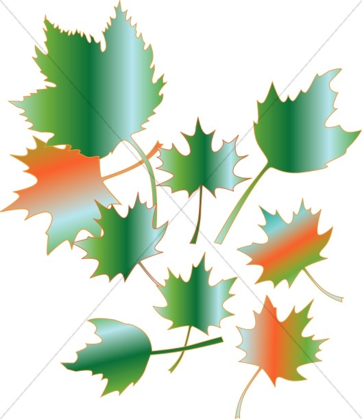 Gradient Style Maple Leaves
