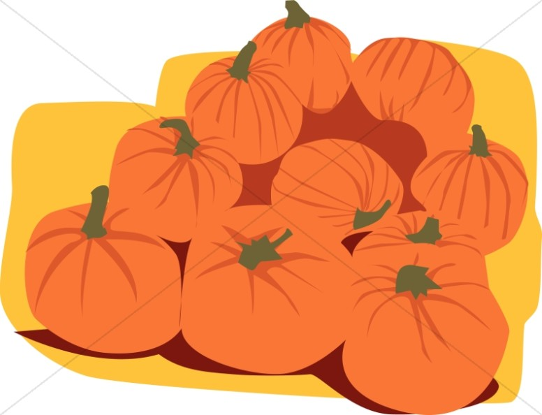 Pile of Harvested Pumpkins