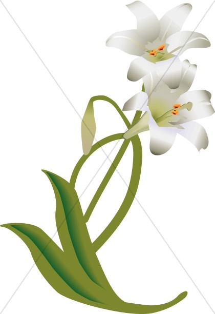 white easter lily decoration church flower clipart rh sharefaith com easter lily flower clip art easter lily border clip art