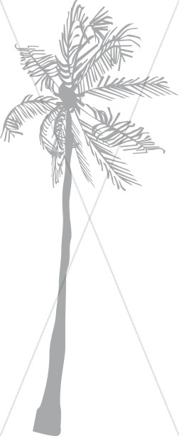 Basic Gray Palm Tree