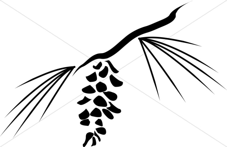 pine cone and needles woodcut nature clipart