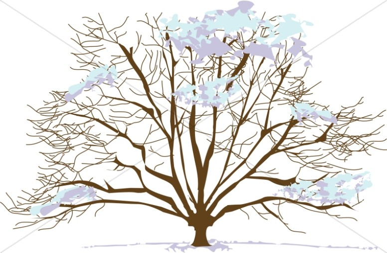 snowy winter tree nature clipart rh sharefaith com winter christmas tree clipart winter christmas tree clipart