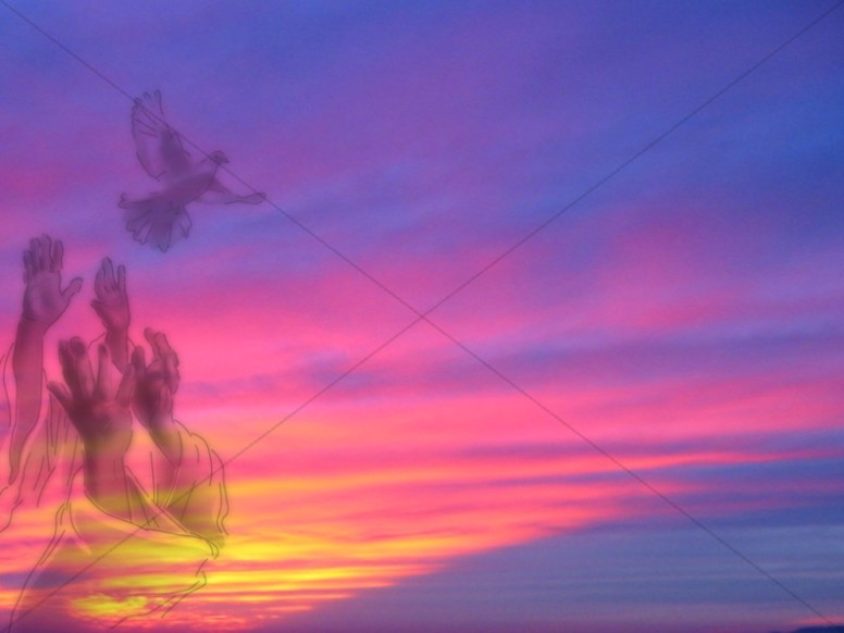 Reaching for Soaring Bird on Purple Sunset
